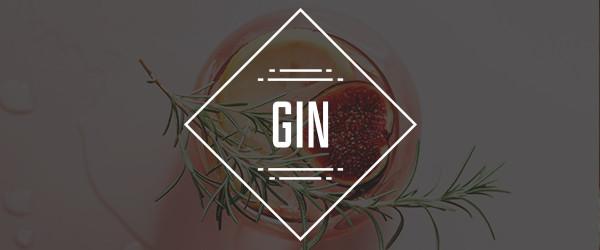 media/image/Gin_Mobile.jpg
