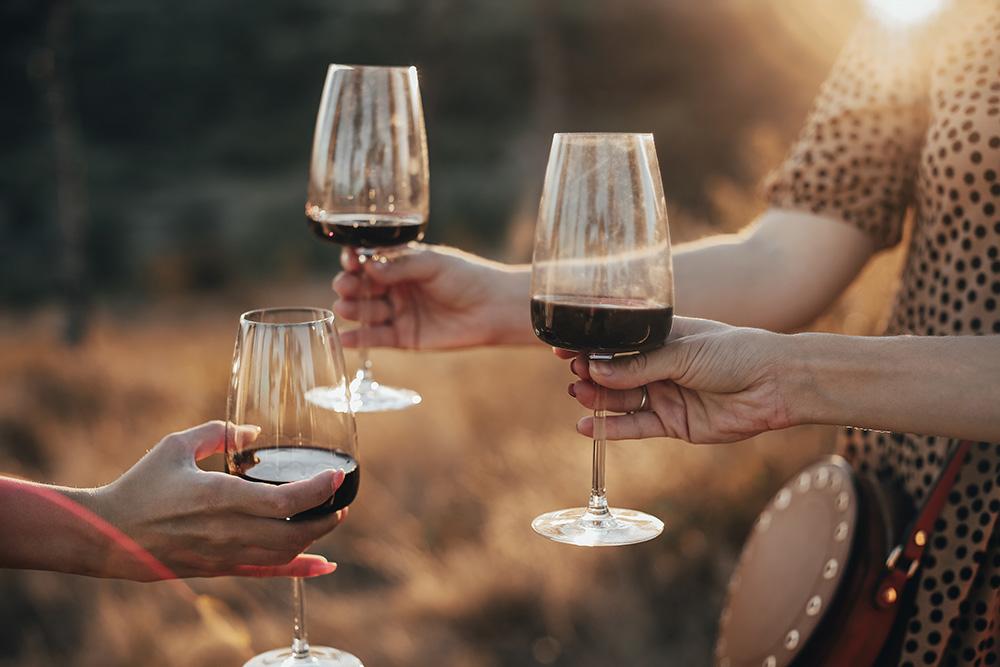 Rotwein aus Italien – unsere Top 10